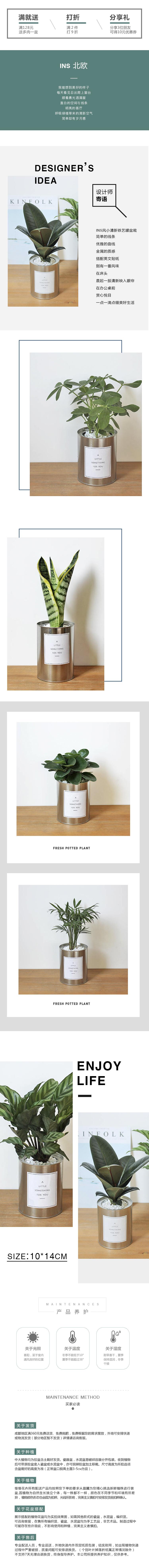 鐵罐小植物.jpg