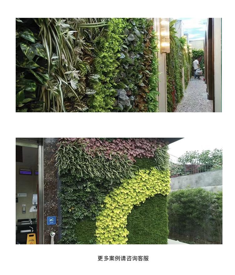 植物墻 頁面4.jpg