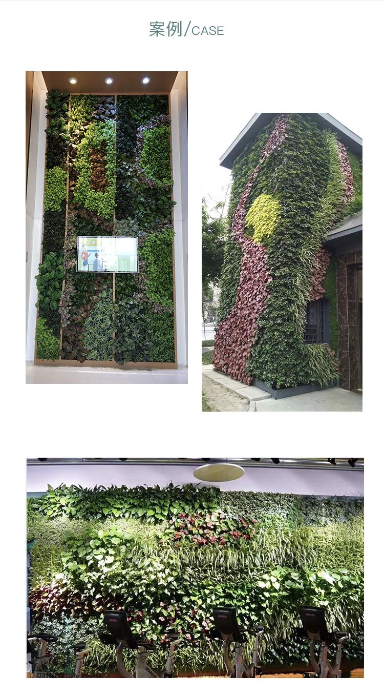植物墻 頁面3.jpg