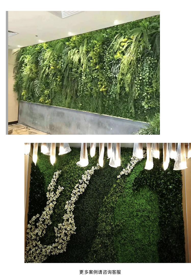 植物墙 页面6.jpg