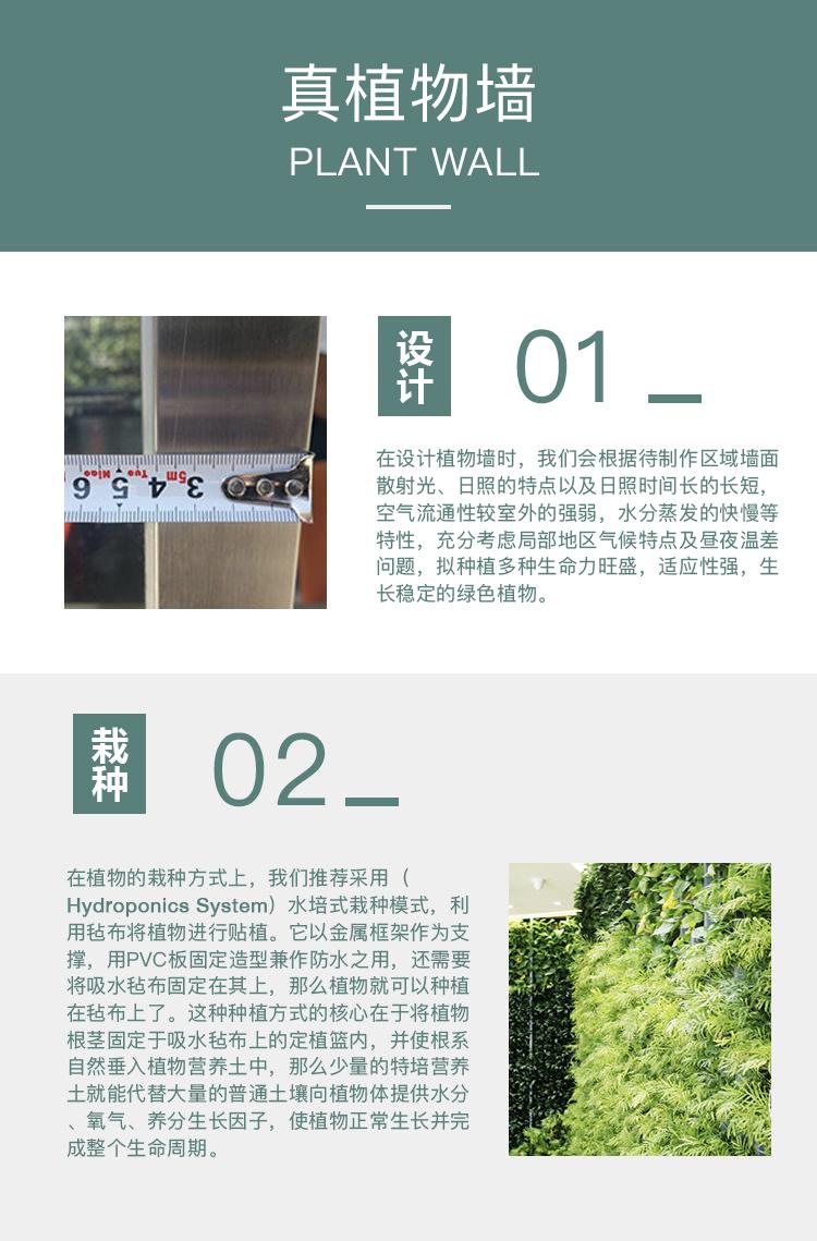 植物墻 頁面1.jpg